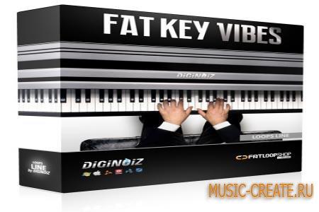 Diginoiz Fat Key Vibes от FatLoud / Diginoiz - сэмплы клавишных