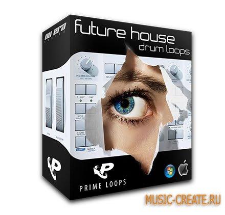 Future House Drum Loops от Prime Loops - сэмплы Electro, House, Minimal