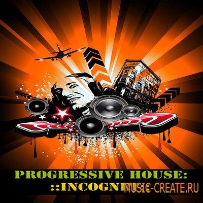 Progressive House: Incognet от WM Entertainment - сэмплы progressive house (WAV / MIDI)