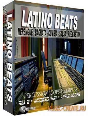 Reggaeton Rex Volume1 от Producers Vault - сэмплы Реггетон (WAV/REX2)