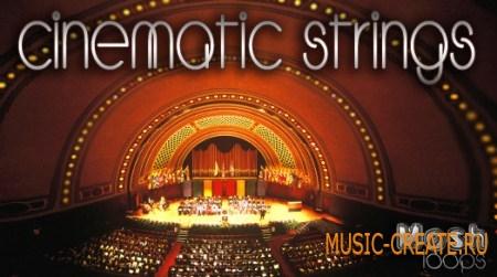 Mosh Loops Cinematic Strings (WAV) - кинематографические струнные сэмплы