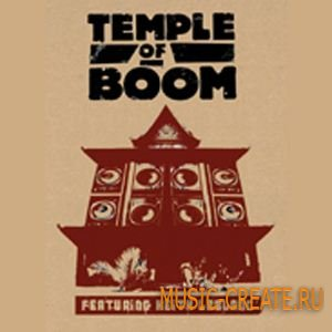 DrumDrops Temple Of Boom (WAV REX) - сэмплы Breaks, Downtempo, Drums, Hip-Hop, Funk, Broken Beats, Percussion, Soul