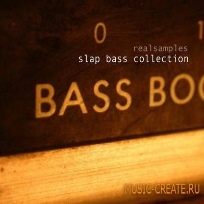 Realsamples Slap Bass Collection (MULTiFORMAT) - сэмплы бас-гитары