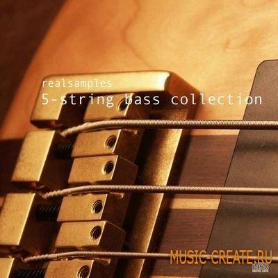 realsamples - 5-String Bass Collection (Multiformat) - сэмплы бас-гитары