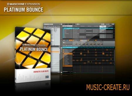 Native Instruments - Platinum Bounce MASCHINE EXPANSiON (TEAM R2R)