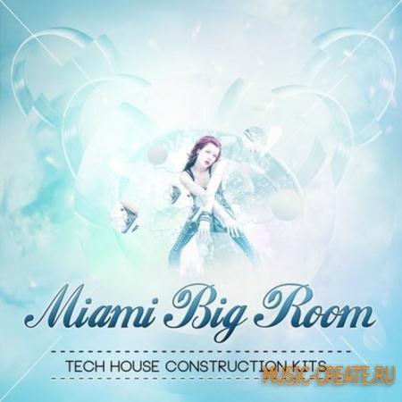 Shockwave - Miami Big Room vol.1 (WAV) - сэмплы House, Progressive, Tech