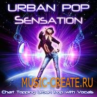 Big Fish Audio - Urban Pop Sensation (WAV) - сэмплы Urban Pop