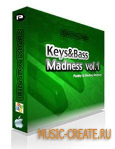 Ray Diaz Keys & Bass Madness - Volume 1 Funky & Latin Grooves (WAV) - сэмплы House, Electro House