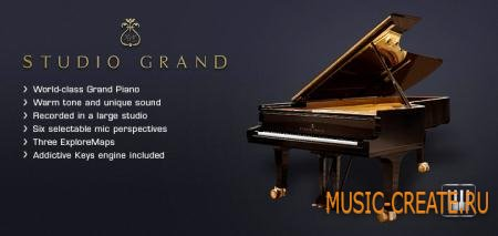 XLN Audio - Studio Grand (TEAM R2R) - рояль Steinway Model D