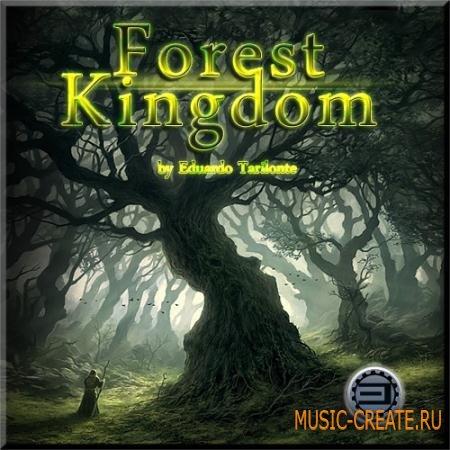 Best Service - Forest Kingdom (Virtual Instrument / Engine 2) - библиотека звуков леса, флейты, арфы