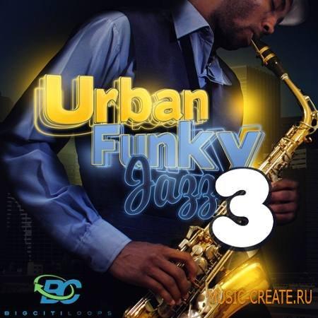 Big Citi Loops - Urban Funky Jazz Vol 3 (WAV MiDi CUBASE) - сэмплы Jazz