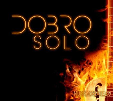 8Dio - Dobro Solo (KONTAKT) - библиотека звуков добро