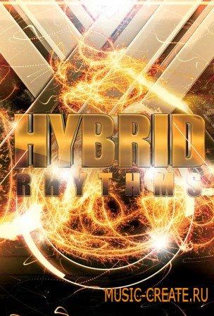 8Dio - Hybrid Rhythms (KONTAKT) - библиотека перкуссионных звуков