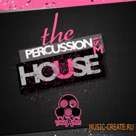 Vandalism - Percussionism House (WAV) - сэмплы перкуссий
