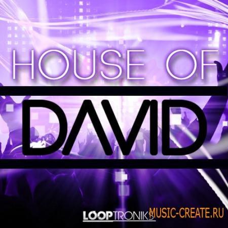 Looptroniks - House Of David (WAV MIDI) - сэмплы House