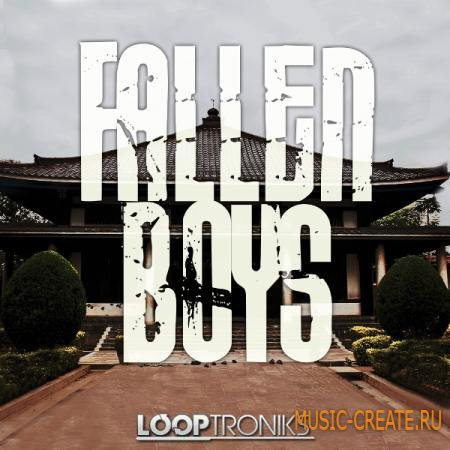 Looptroniks - Fallen Boys (WAV MIDI) - сэмплы Hard Rock