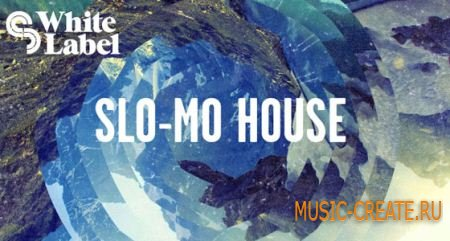 SM White Label - Slo-Mo House (MULTiFORMAT) - сэмплы House