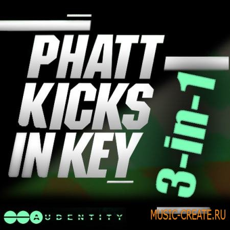 Audentity - Phatt Kicks In Key Bubdle 3-in-1 (WAV) - сэмплы бас-барабанов