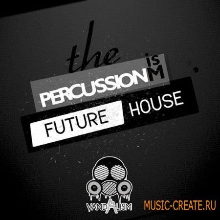 Vandalism - Percussionism Future House (WAV) - сэмплы ударных