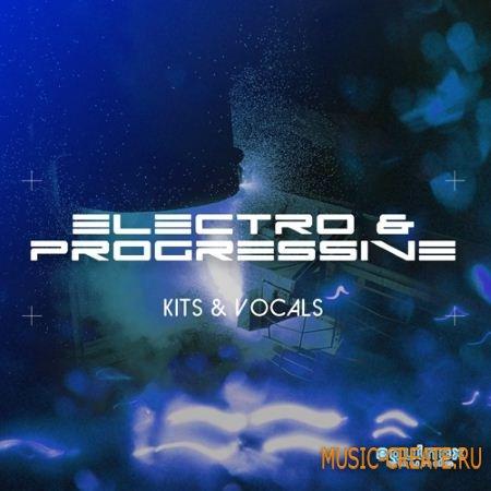 Equinox Sounds - Electro Progressive Kits Vocals (WAV AiFF MiDi) - сэмплы Electro House, Progressive