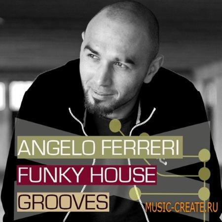 Bingoshakerz - Angelo Ferreri Funky House Grooves (WAV) - сэмплы Funky House