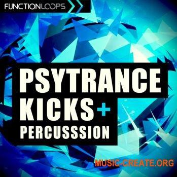 Function Loops - Psytrance Kicks And Percussion (WAV) - сэмплы ударных