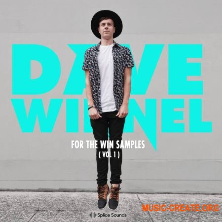 Splice Sound Dave Winnel For The Win Samples Vol.1 (WAV) - сэмплы EDM, Big Room, Progressive House, Electro