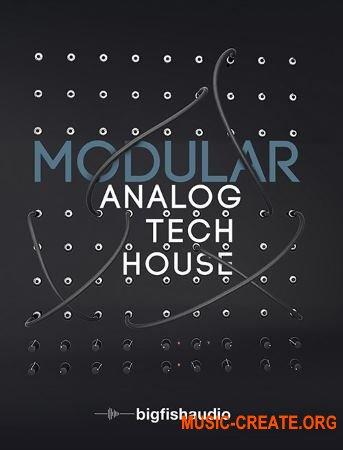 Big Fish Audio Modular Analog Tech House (MULTiFORMAT) - сэмплы Tech House