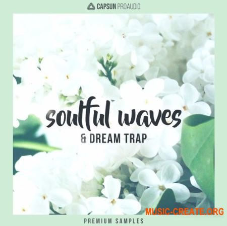 CAPSUN ProAudio Soulful Waves and Dream Trap (WAV) - сэмплы Hip Hop, Future Beats, Melodic Trap