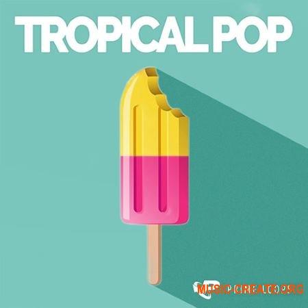 Prime Loops Tropical Pop (WAV) - сэмплы Pop