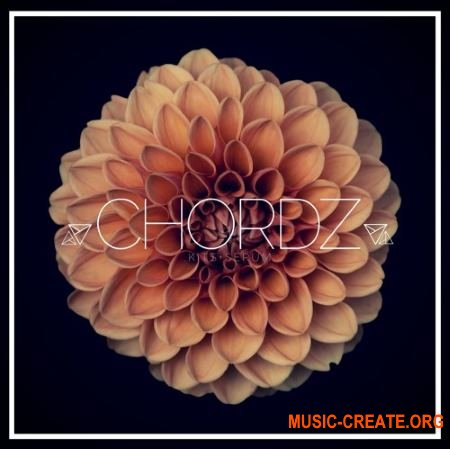 Unmute Chordz Kits and Serum Presets (WAV MIDI FXP) - сэмплы Future Bass