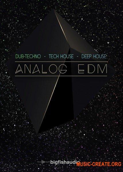 Big Fish Audio Analog EDM (MULTiFORMAT / KONTAKT) - сэмплы EDM, Dub Techno, Deep House, Tech House
