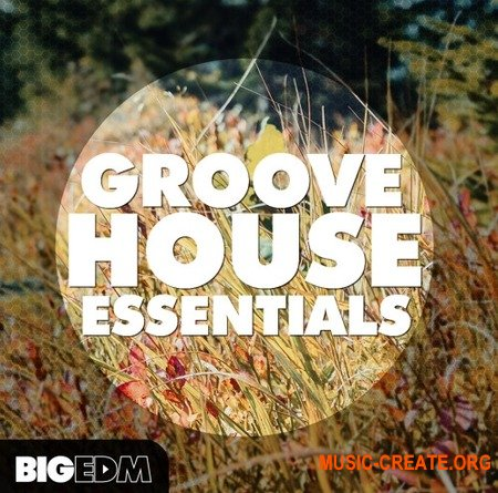 Big EDM Groove House Essentials (WAV MiDi SYLENTH1 SPiRE) - сэмплы Groove House, House, EDM