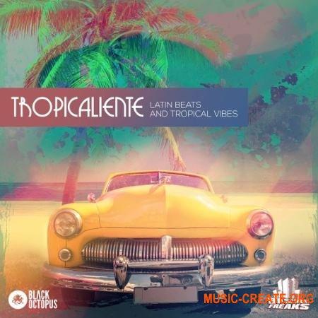Black Octopus Sound Tropicaliente (WAV) - сэмплы Tropical House, Tech House