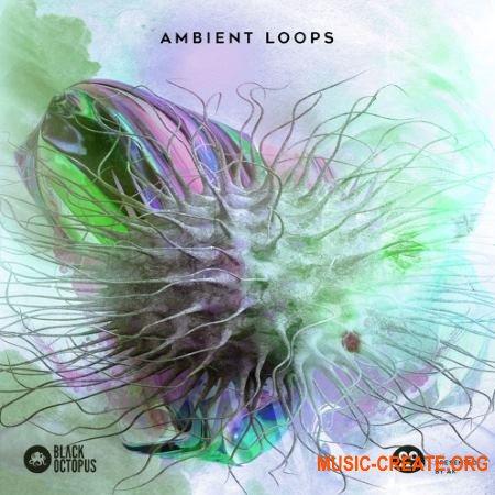 Black Octopus Sound AK: Ambient Loops (WAV) - сэмплы Ambient