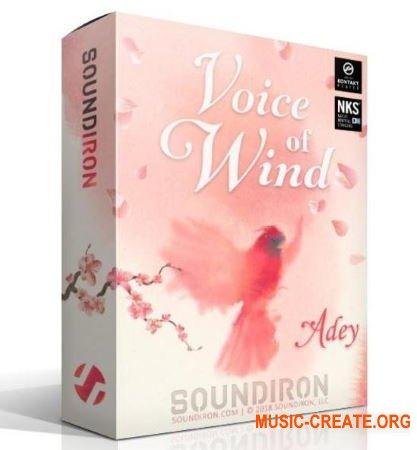 Soundiron Voice of Wind Adey (KONTAKT) - вокальная библиотека