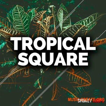 Smokey Loops Tropical Square (WAV MiDi) - сэмплы Tropical House