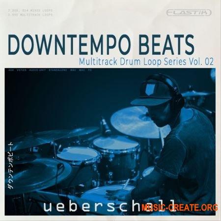 Ueberschall Downtempo Beats (ELASTIK) - банк для плеера ELASTIK