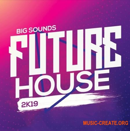 Big Sounds Future House 2K19 (WAV MIDi Serum Presets) - сэмплы Future House