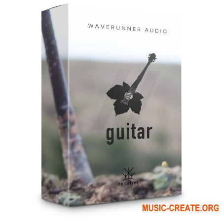WaveRunner Audio Johns Guitar (KONTAKT) - библиотека гитары