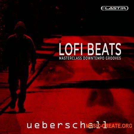 Ueberschall LoFi Beats (ELASTIK) - банк для плеера ELASTIK