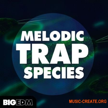 Big EDM Melodic Trap Species (WAV MIDi PRESETS) - сэмплы Trap