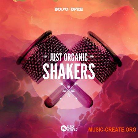 Black Octopus Sound Just Organic Shakers (WAV) - сэмплы шейкеров