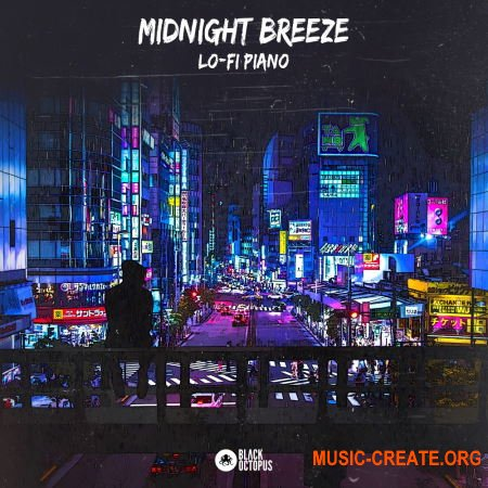 Black Octopus Sound Midnight Breeze - Lo-Fi Piano (WAV) - сэмплы Lo-Fi
