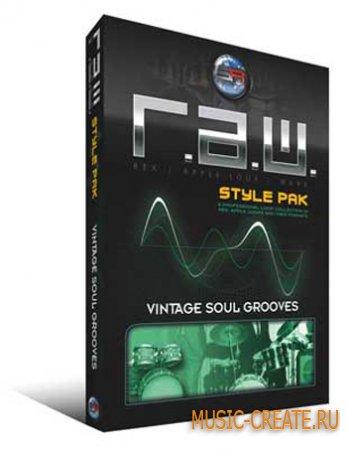 Rex Pak Vintage Soul Grooves от Sonic Reality - винтаж грувы