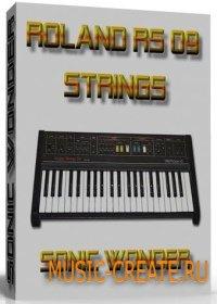 ROLAND RS 09 от SONIC WONDER - VST синтезатор органа
