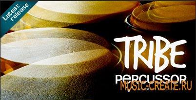 Tribe Percussor от Cluster Sound - лупы перкуссионных инструментов