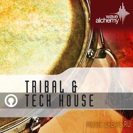 Wave Alchemy Tribal & Tech House (WAV, REX 2, AiFF) - сэмплы Tribal, Tech House