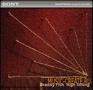 Bradley Fish: High Strung от Sony Creative Software - звуки от Bradley Fish (WAV ACiD)