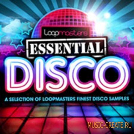 Loopmasters - Essentials 08: Disco (WAV) - сэмплы Disco, Nu-Disco